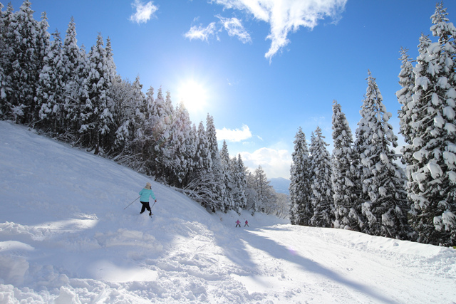CANON EOS M2 + EF-M11-22mm f/4-5.6 スキーで雪景色を撮影