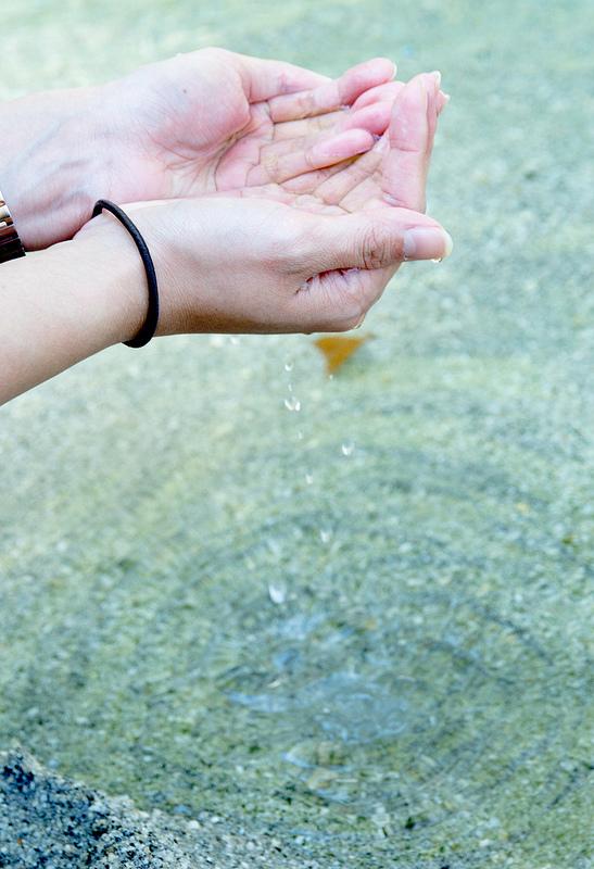 サントリー南アルプスの天然水を育む豊かな自然の中へ