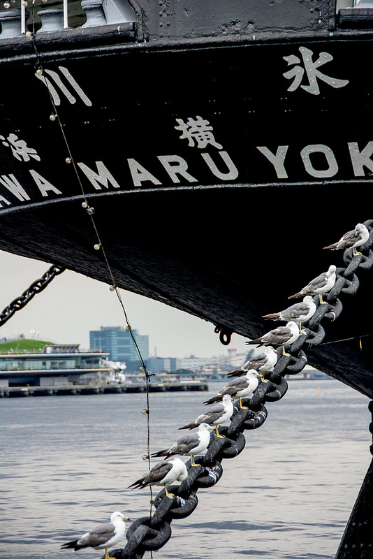 日本郵船 氷川丸