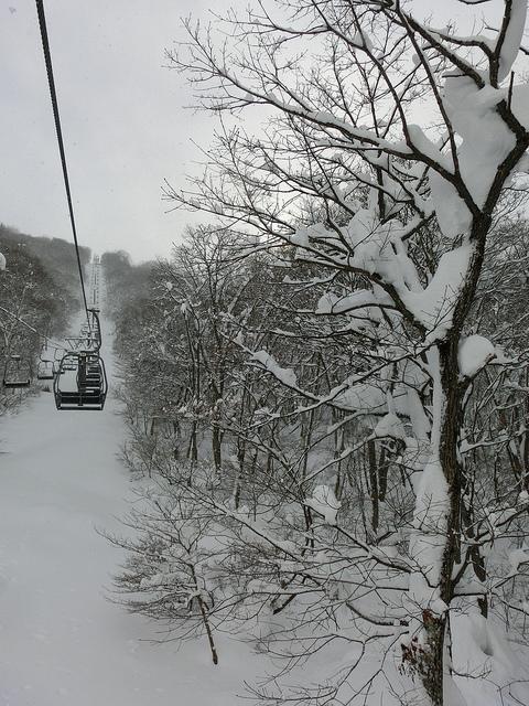 スキーその後