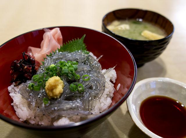 小田原の生しらす丼と熱海の格安温泉宿