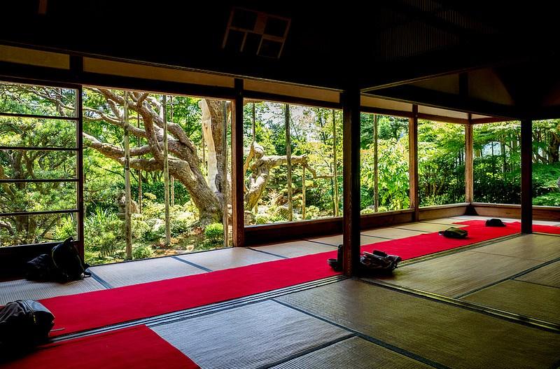 初夏の京都の緑その3 実光院と宝泉院