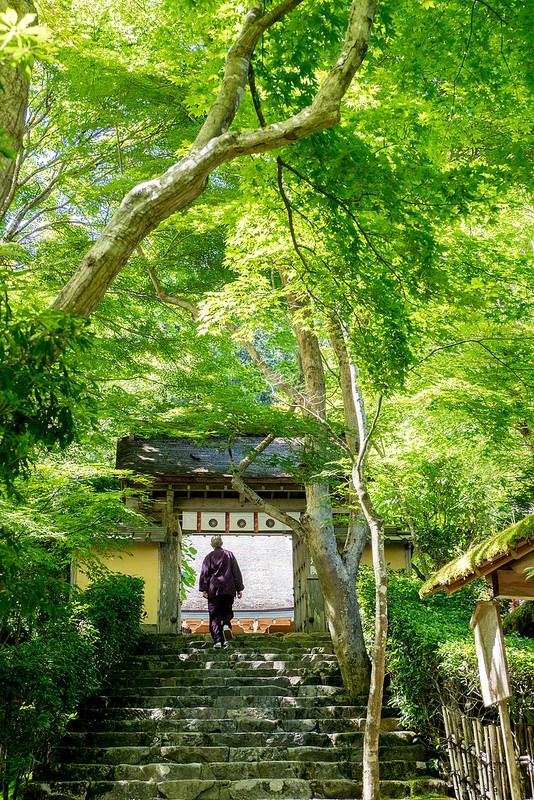 初夏の京都の緑その4 京都大原寂光院