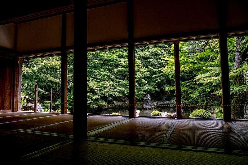 初夏の京都の緑その1 蓮華寺