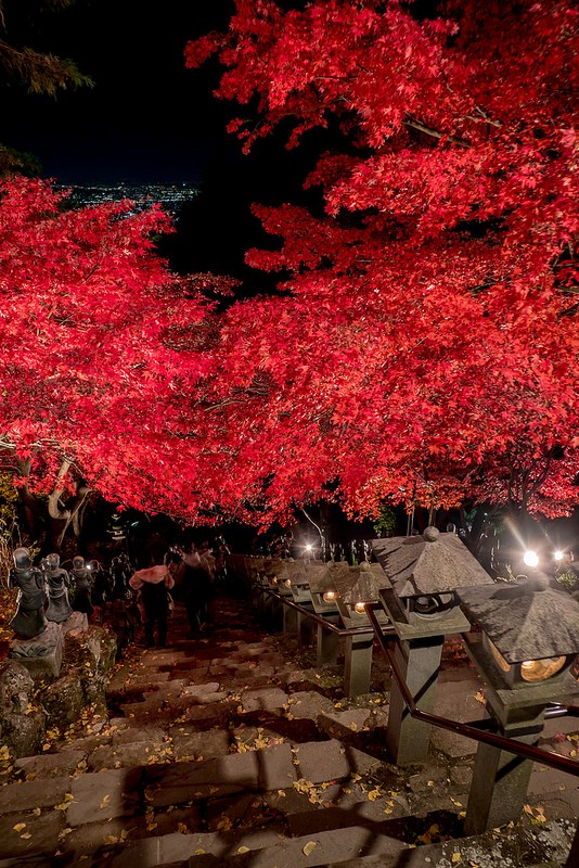 大山寺と大山阿夫利神社の美しい紅葉ライトアップと夜景