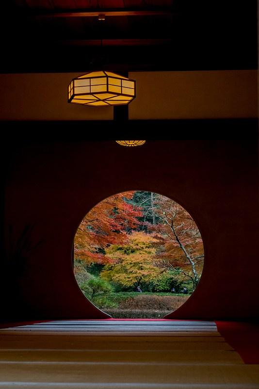 紅葉の北鎌倉 明月院と円覚寺