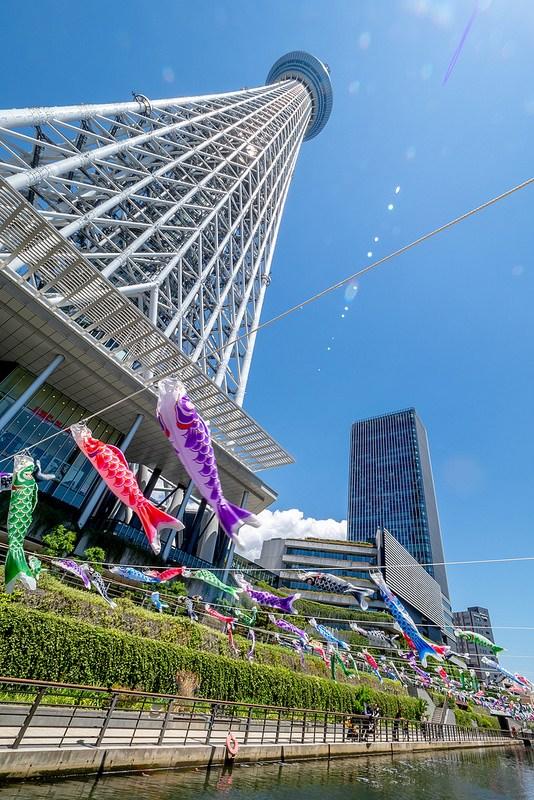 東京スカイツリーと鯉のぼり