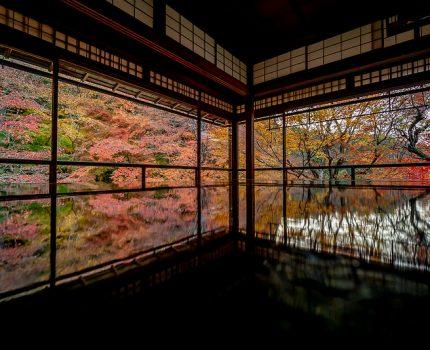 京都の紅葉めぐり 紅葉の反射がインスタ映えな 瑠璃光院の床もみじ