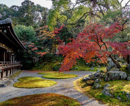 京都の紅葉めぐり 醍醐寺の弁天池と三宝院庭園の紅葉
