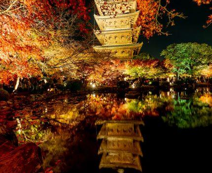 京都の紅葉めぐり 瓢箪池に映る五重塔と紅葉 東寺紅葉ライトアップ