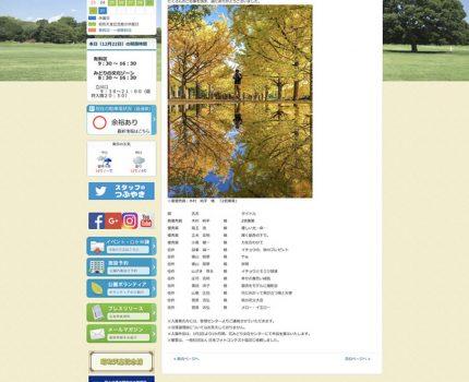 昭和記念公園フォトコンテスト2018秋 入選