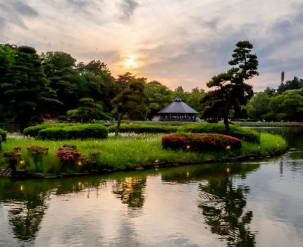 千葉公園 YohaS 2019