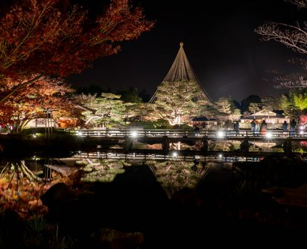 国営昭和記念公園 秋の夜散歩2019 #東京カメラ部