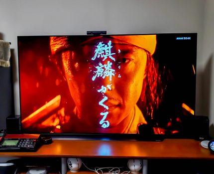 外出を自粛して65型有機ELテレビでホームシアター LGエレクトロニクス OLED65C9PJA