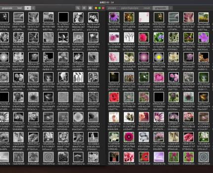 モノクロや線画からカラー画像を生成できたりするpix2pixが面白そう