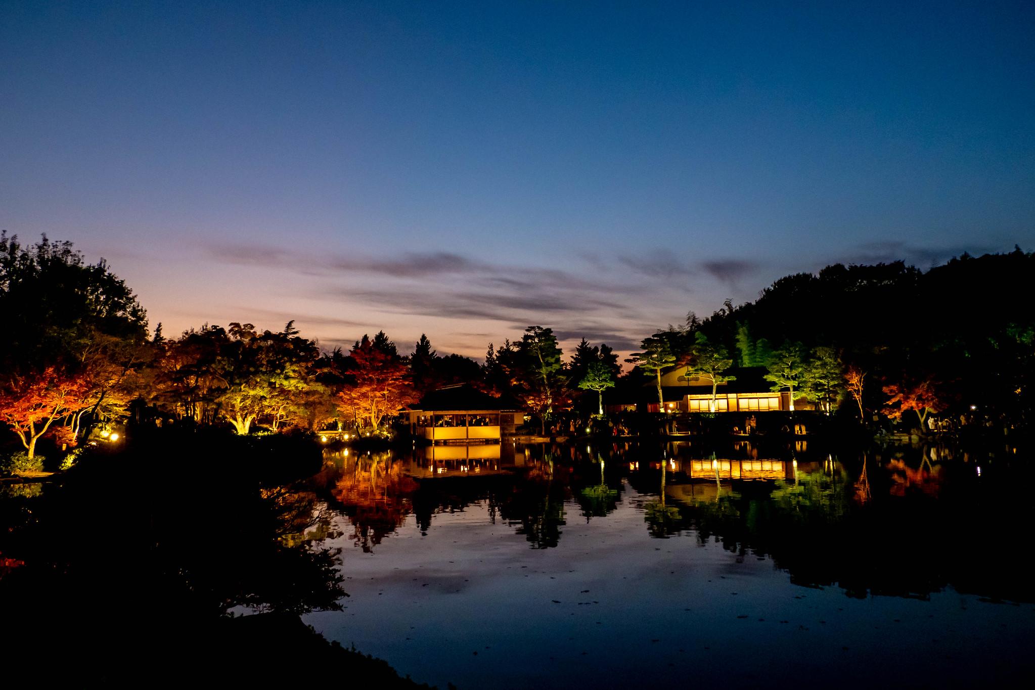 紅葉のライトアップと黄昏リフレクション 昭和記念公園 秋の夜散歩2020