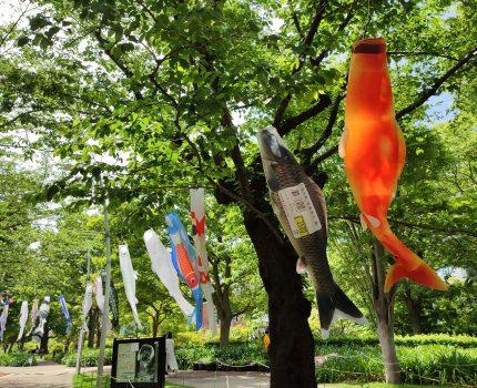 東京ミッドタウン ミッドパーク こいのぼりコレクション