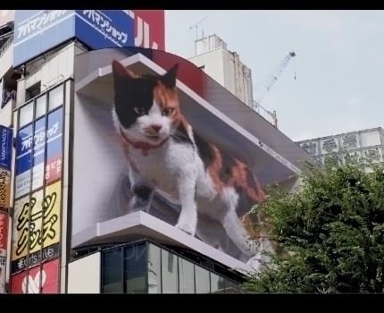 新宿東口 巨大3D三毛猫 動画フリッカーの後処理軽減